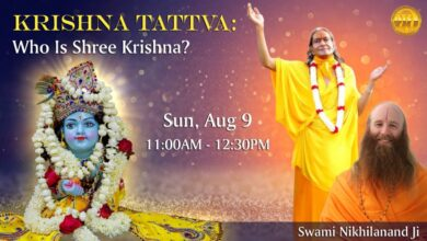 Who is Shree Krishna |  Swami Nikhilanand | 8/9/2020