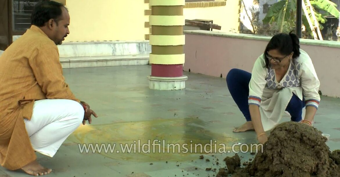 Hindu woman cleans temple floor on Govardhan Puja