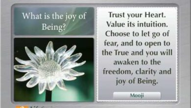 LifeSeries Quotes on Self Realization.mov