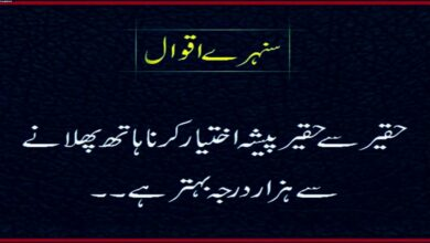 lajwab Urdu/Hindu Love Qoutes |(AmzinG Life Successfully Aqwel e zareen)Golden Words (Nasir Studio)