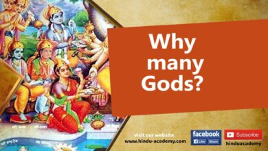 Why many Gods?